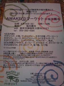 Awakes0616